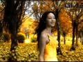 金达玻璃文化宣传片 (1播放)