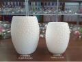 玻璃花瓶48